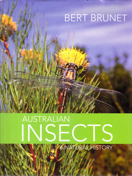 Australian Insects: A Natural History