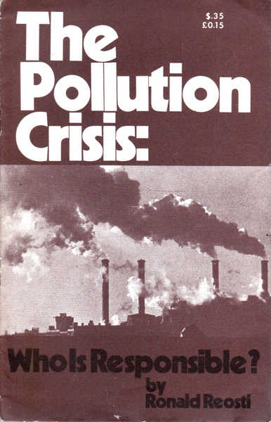 The Pollution Crisis: Who is Responsible?