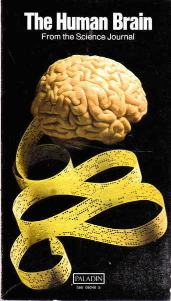 The Human Brain: From the Science Journal