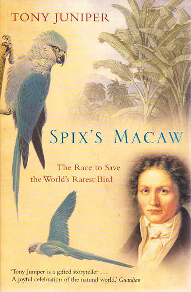 Spix's Macaw: The Race to Find the World's Rarest Bird